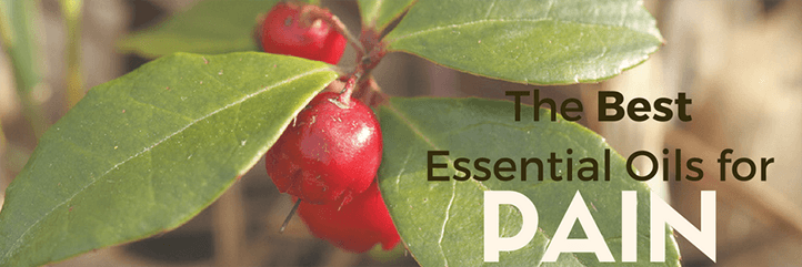 The best essential oils for muscle pain and how to make an essential oil pain relief oil.