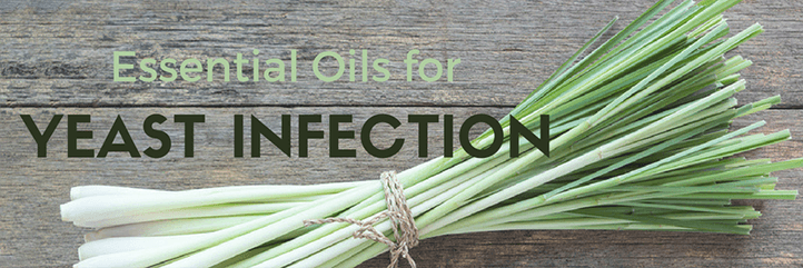 The top antifungal essential oils for candida and how to use tea tree oil for yeast infection.