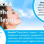 doterra breathe oil blend