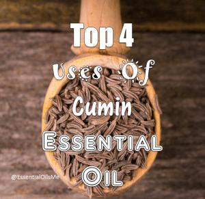 Cumin Essential Oil