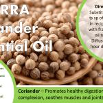 doterra coriander essential oil