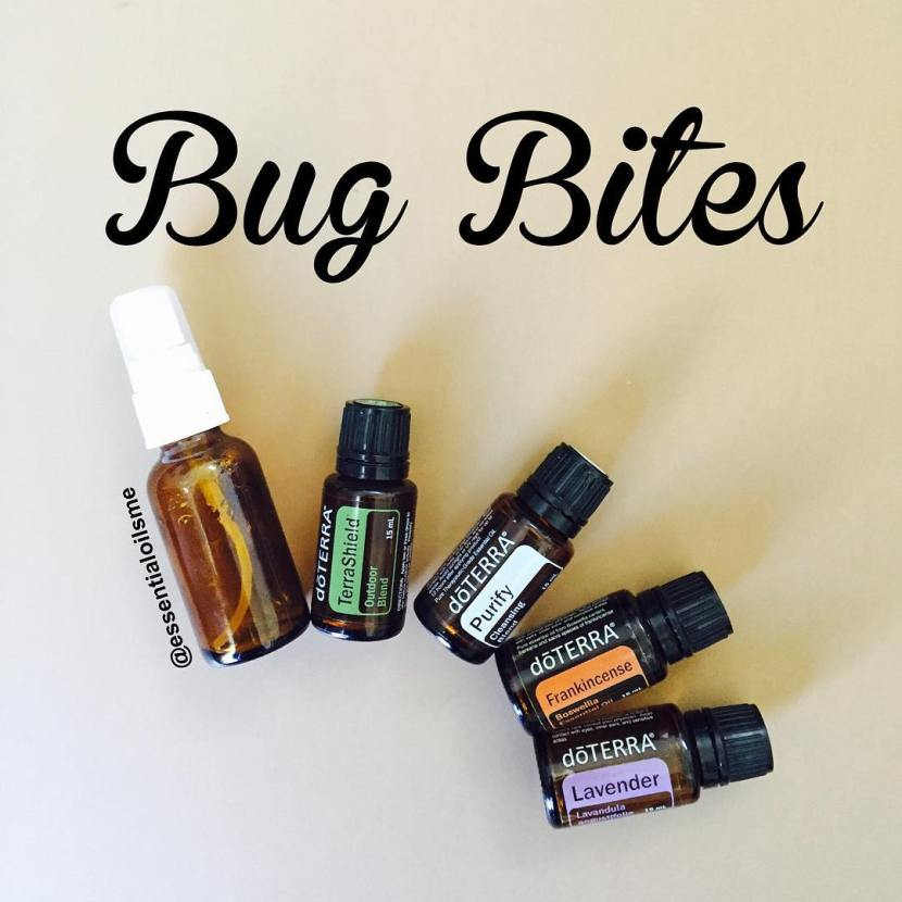 different types of bug bites
