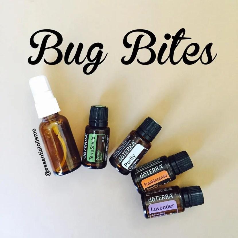 different types of bug bites