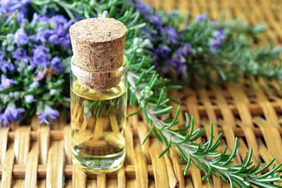 rosemary essential oil bottle 2
