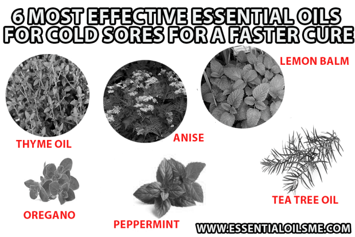 best essential oil for cold sore