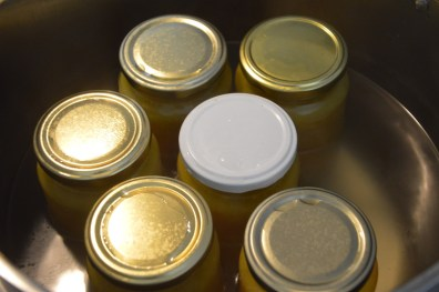 For the canning process place the filled jars in a boiling water bath