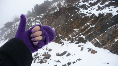 Stylish purple gloves, thanks to my friend Tina for taking care of me!