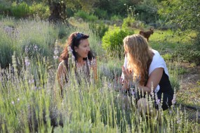 Visit to the organic farm 'The Lavender Way'