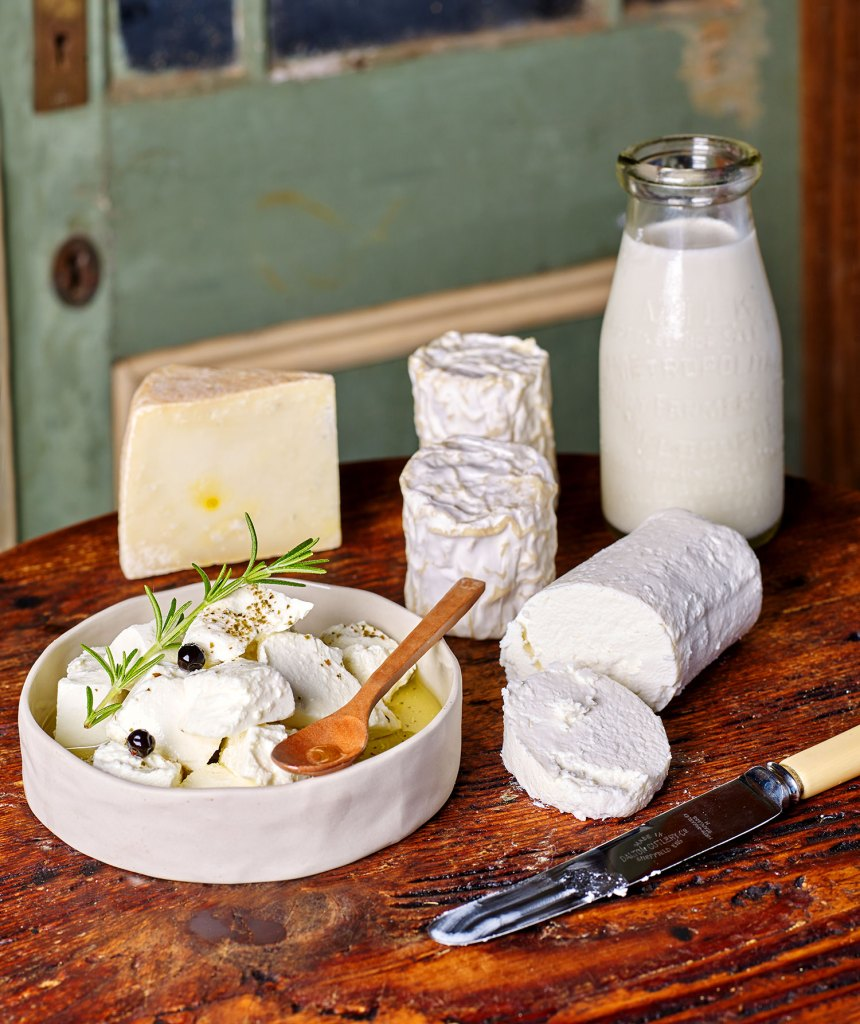 Tolpuddle Farm Goat milk cheeses