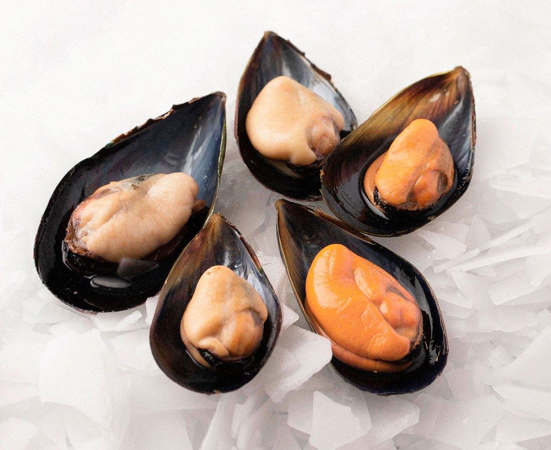 Plump winter season 2021 Australian mussels