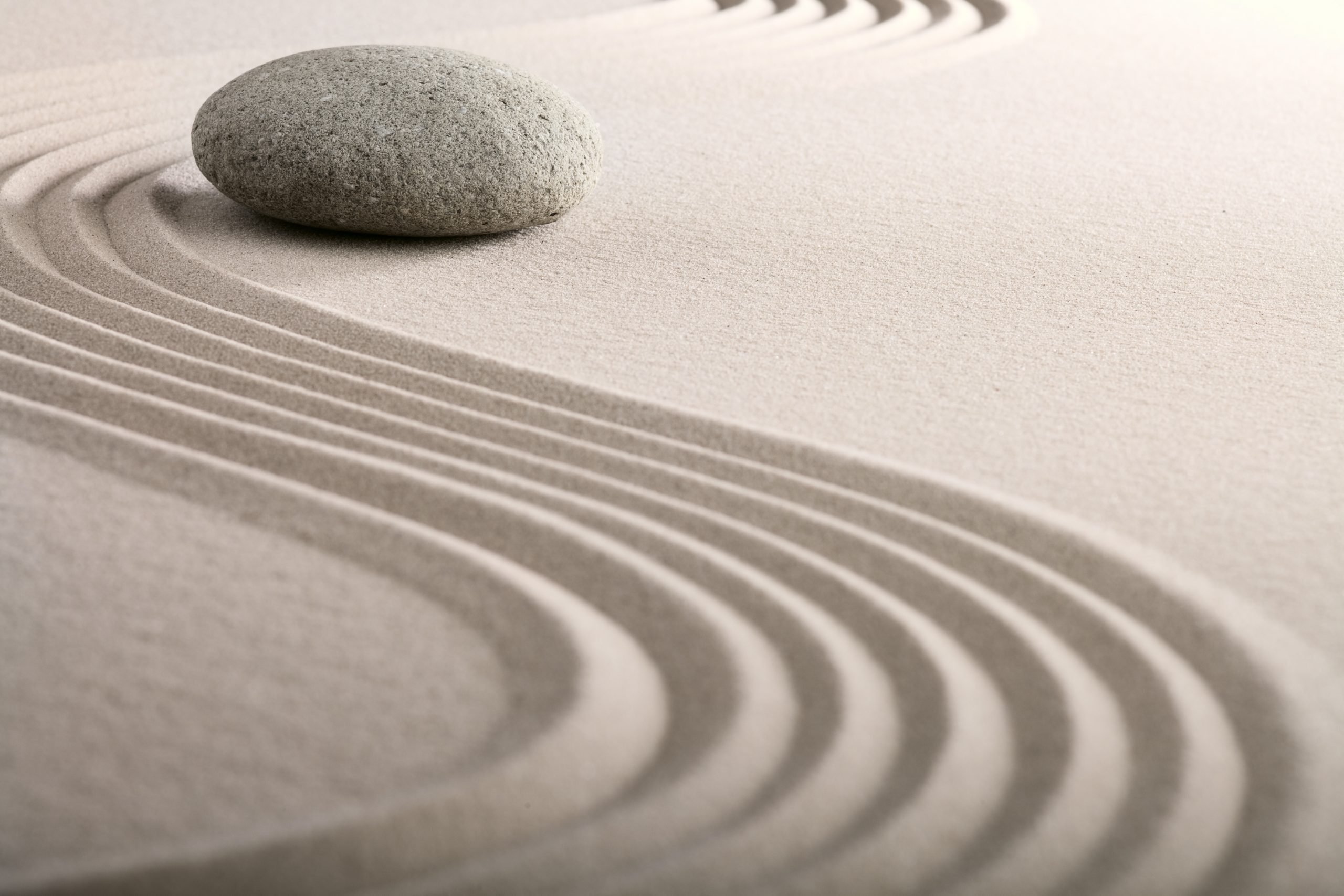 Zen Wisdom and Confident Speaking