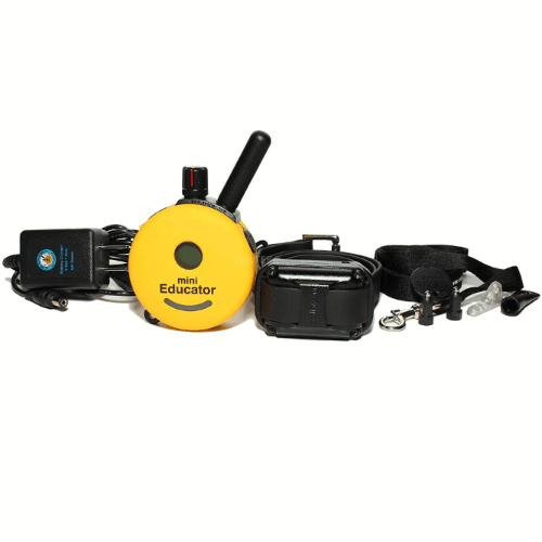 training collar includes charger and lanyard