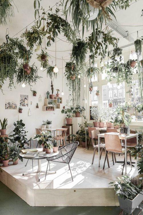 designing cafe