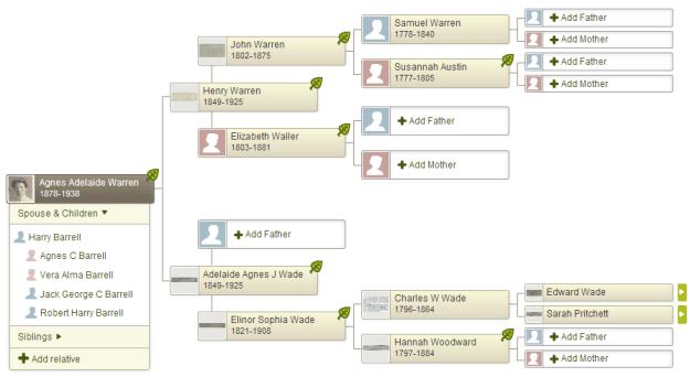 agnes-adelaide-warren-tree