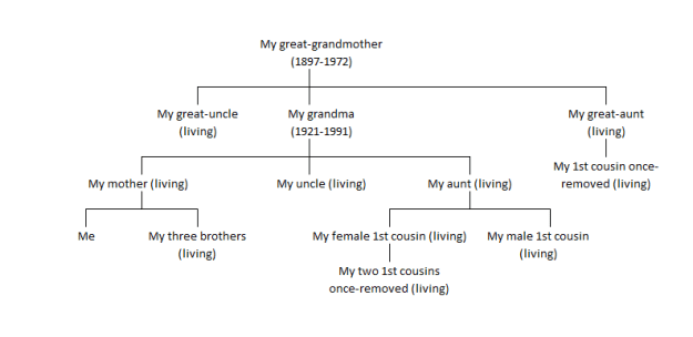 Everyone in this chart has, or had, mtDNA haplogroup H1g.