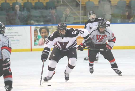 Verona/Glen Ridge hockey team skates to fine season