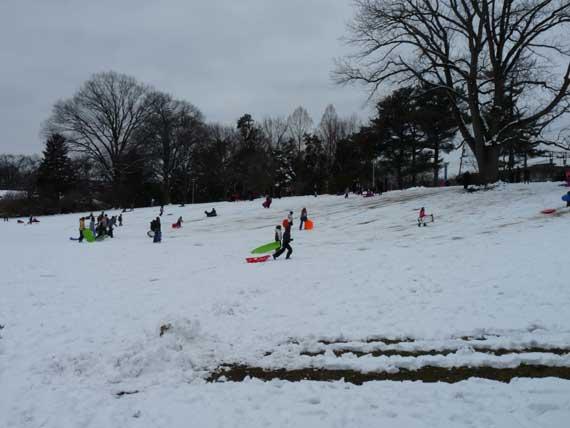 Sledding in Memorial Park