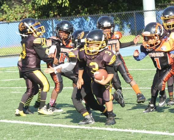 Irvington Golden Knights football preps for season