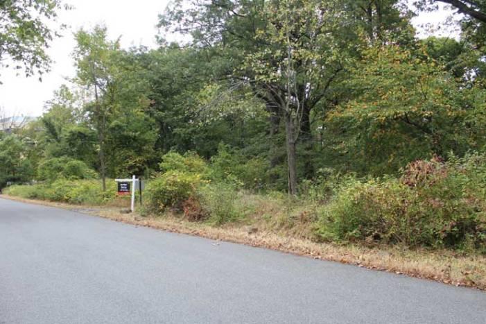 TC explores option to buy 12-acre property