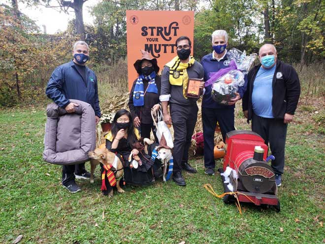 Winners announced for Essex County canine Halloween costume contests