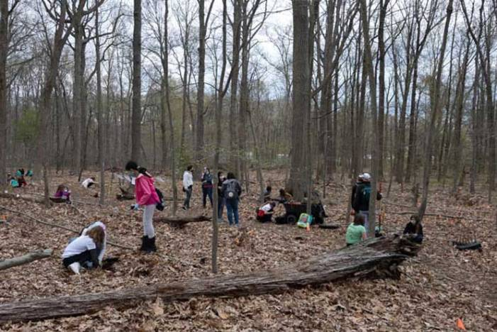 Girls Scouts plant trees in the South Mountain Reservation