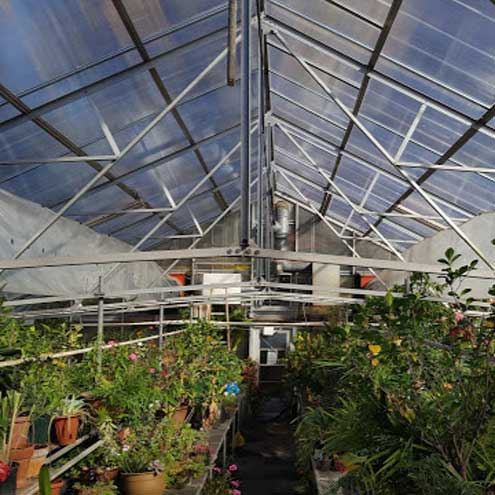 Greenhouse space available to Maplewood residents for 2021-22