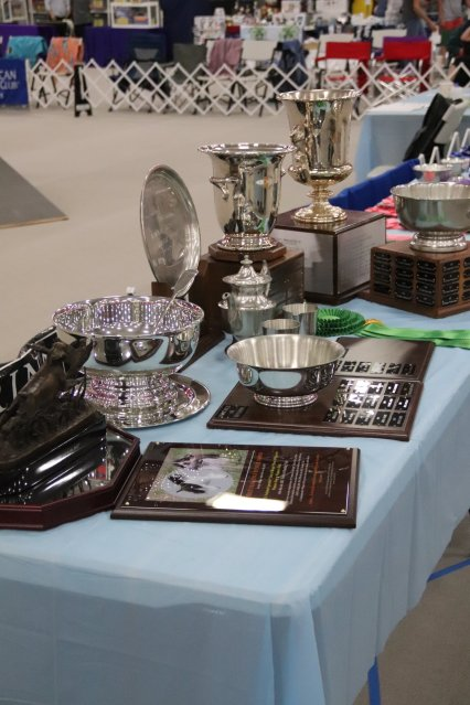 Howard trophy table 4