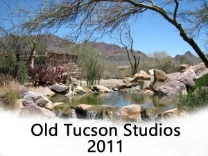 1 old tucson button 2011