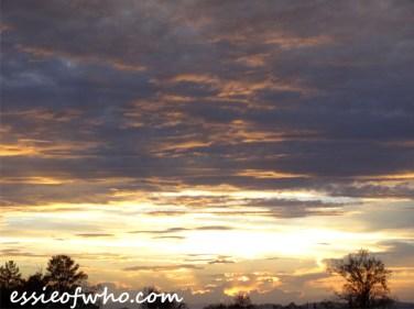 august 2016 sunset (26)