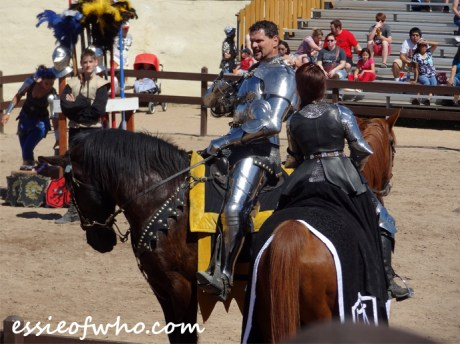 arizona renaissance festival march 11 2017 (42)