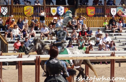 arizona renaissance festival march 11 2017 (46)