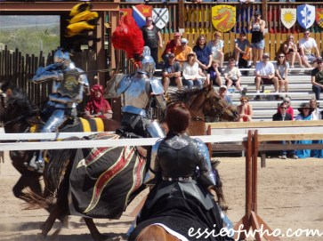arizona renaissance festival march 11 2017 (47)