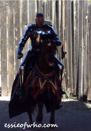 arizona renaissance festival march 11 2017 (52)