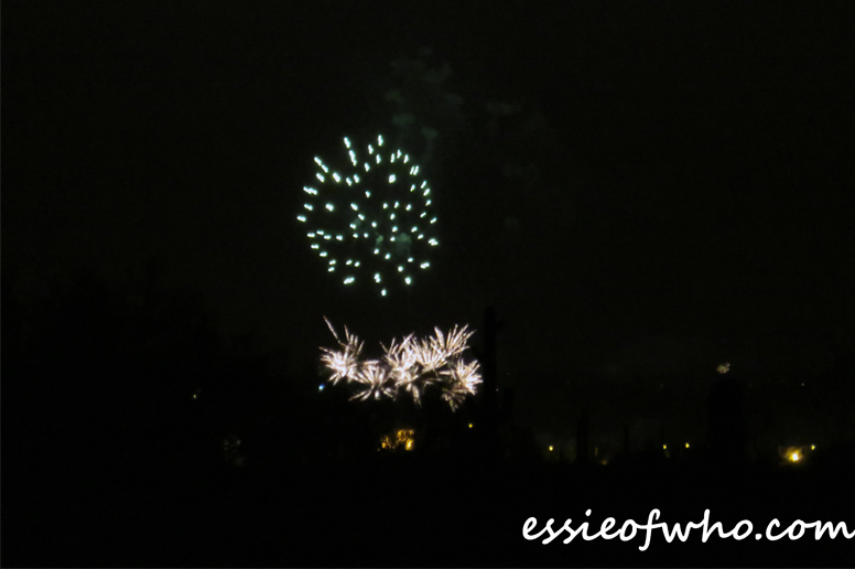 2017 4th of july firework (15)