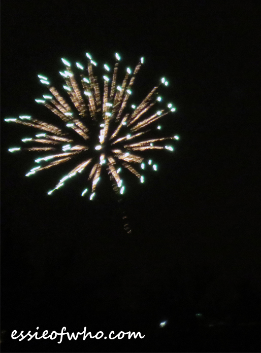 2017 4th of july firework (2)