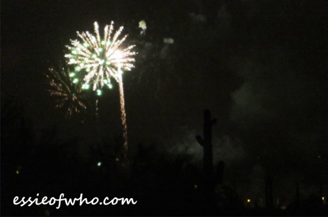 2017 4th of july firework (3)