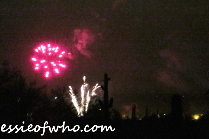 2017 4th of july firework (8)
