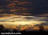 august 2016 sunset (22)