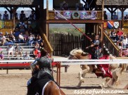 arizona renaissance festival march 11 2017 (30)