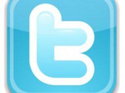 Twitter-Logo-300x293-1-253x189