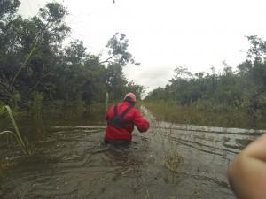 """Camino """"saca cosechas"""" secundario. Sur Quintana Roo, 18 septiembre. Foto: Bruno Cárcamo."""