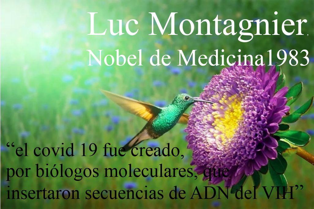 LM-Premio noblel 83