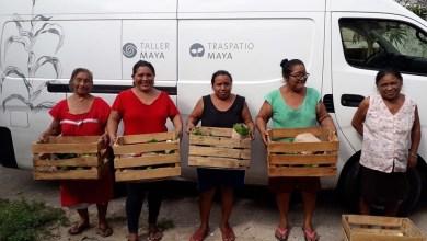 Foto de Venden sus cosechas de traspatio maya en huacales