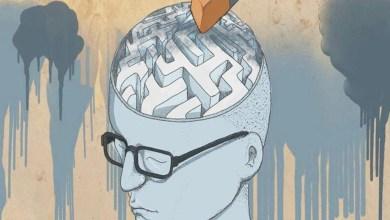 Foto de Demencia y memoria: un descubrimiento médico explica las enfermedades neurodegenerativas