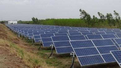 """Foto de Pretenden construir """"huerto solar"""" en Hopelchén"""