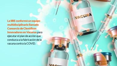 Foto de Doctora del equipo que va por la vacuna mexicana se lamenta: por años menospreciamos a la ciencia