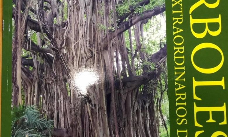 Árboles de La Habana libro de Carlos Barrera Jure. Foto de Salvador Peña L.