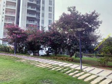 estancia_6