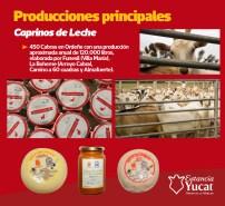 yucat10