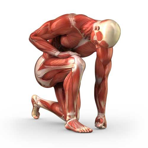 Entrenador personal habla sobre daño muscular